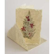 1111 Julkort: Julgran cypress