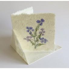 1115 Blomsterkort Carré