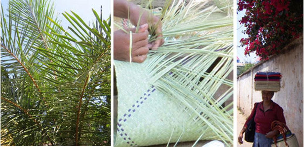 raffia palm, flätning av vass, hantverkare och designer