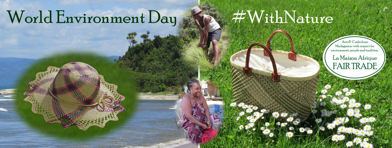 world environment day 5 june 2017